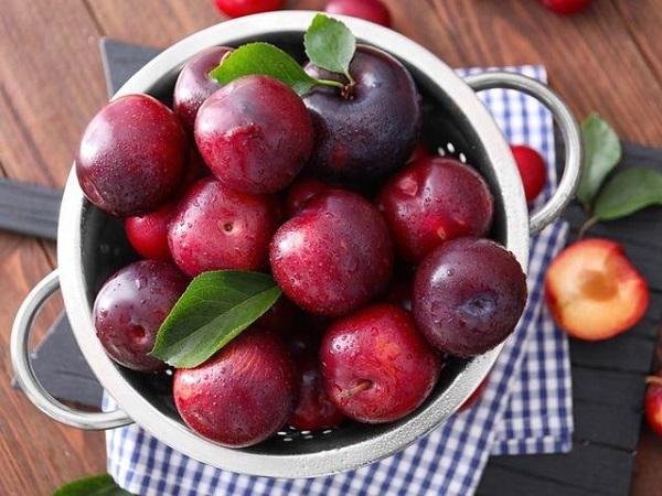 Không chỉ có sữa hay trứng, những loại trái cây này cũng giàu canxi, rất tốt cho trẻ