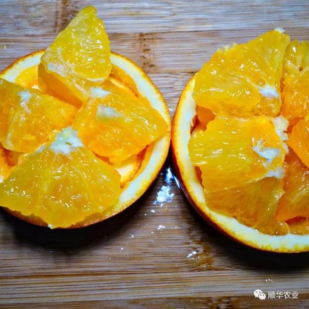 4 loại trái cây bạn nên ăn để kiểm soát hormone tuyến giáp - Ảnh 4