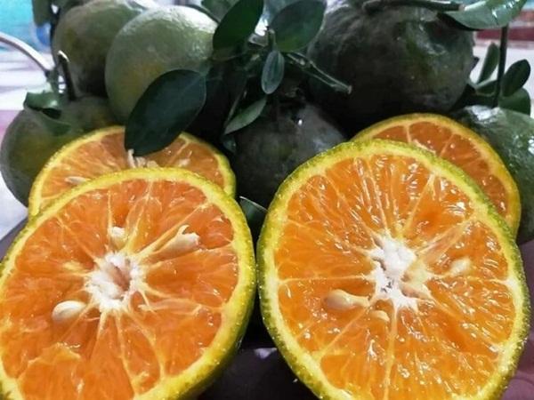 5 đối tượng tuyệt đối không được ăn cam, quýt
