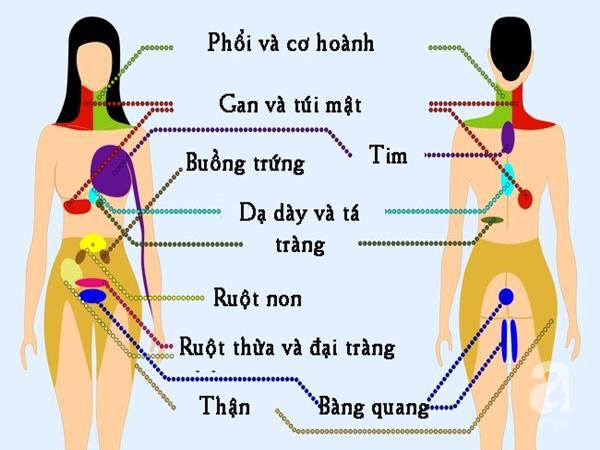 9 vị trí nếu thấy đau thì bạn nên cẩn trọng và đi khám càng sớm càng tốt