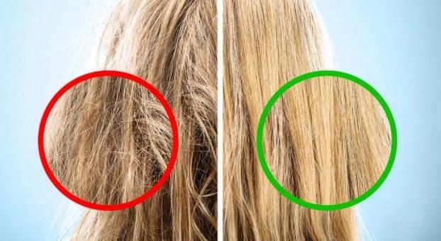 7 sai lầm khi chải tóc khiến tóc hư tổn, gãy rụng nhiều người mắc phải - Ảnh 2