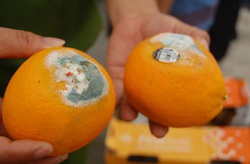 5 thực phẩm càng ăn càng nuôi tế bào ung thư, 99% người Việt dùng mỗi ngày mà không biết - Ảnh 6