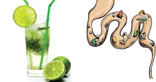 Cách dọn sạch 'rác, cặn bẩn' trong đường ruột để gia tăng tuổi thọ, đặc biệt ở người già - Ảnh 1