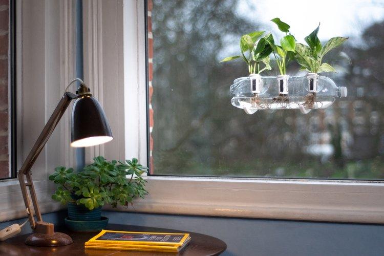 Biến nhà bạn thành một khu vườn sáng bừng sức sống từ những vật dụng tái chế chỉ nhờ bộ dụng cụ đơn giản này - Ảnh 2