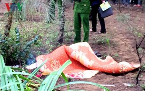 Phát hiện thi thể người đàn ông Hàn Quốc bên rừng phi lao - Ảnh 1