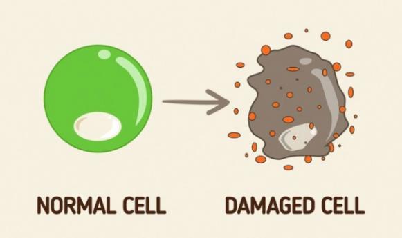 Điều gì sẽ xảy ra với cơ thể nếu bạn uống sinh tố cà rốt? - Ảnh 7