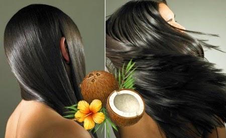Dưỡng tóc chắc khỏe, óng mượt bằng cách thoa dầu dừa lên tóc