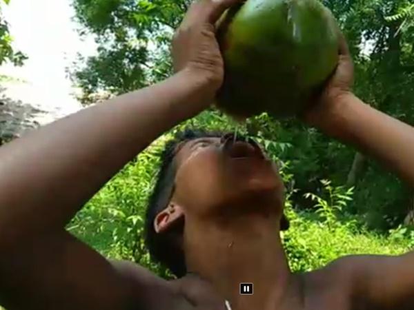 Chặt dừa uống cạn nước rồi quăng xuống ao, ngày hôm sau cậu bé vớt lên liền vui mừng khi thấy thứ này bên trong
