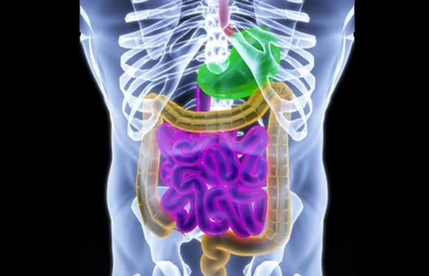 2 loại vi khuẩn trong miệng có thể là 'động lực' của ung thư đại trực tràng và ung thư tuyến tụy, người bị bệnh nha chu càng cần chú ý - Ảnh 3