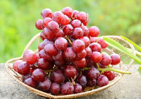 Thường xuyên sử dụng 5 loại trái cây màu đỏ này, da giảm nếp nhăn và ngày càng mịn màng, hệ miễn dịch cũng được nâng cao - Ảnh 1
