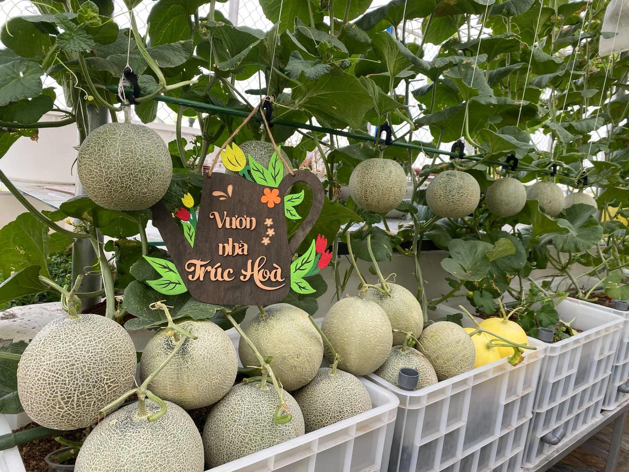 Đã con mắt trước 'khu vườn trên mây' 100m2 của mẹ đảm, rau trái 4 mùa ăn cả năm không hết - Ảnh 1