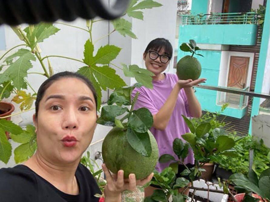 Khoe ảnh thu hoạch hoa quả trên sân thượng, MC Cát Tường khiến fan xuýt xoa: Ước gì sở hữu vườn rau trong mơ