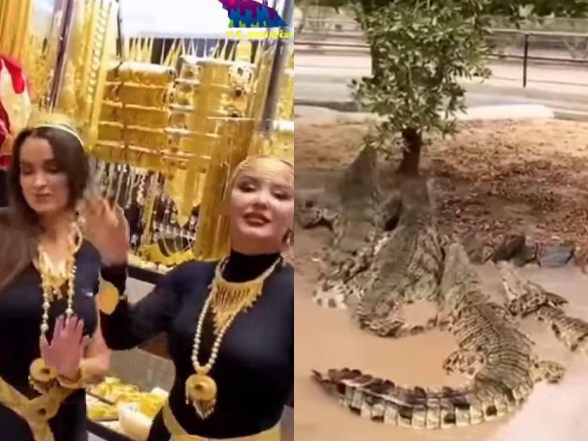 LẠ ĐỜI: Tắm cá sấu, dắt beo đi lượn, dát vàng lên váy quẫy tung trời đất và 7749 thú vui xa xỉ của giới siêu giàu