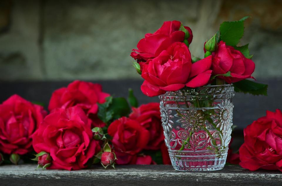 Tặng hoa hồng đỏ vào ngày Valentine