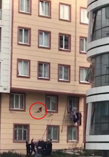 Clip nghẹt thở: Cứu sống em bé 2 tuổi rơi từ cửa sổ tầng 3 - Ảnh 2