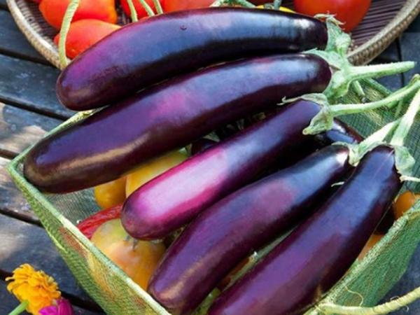 Cách chọn cà tím ngon, mềm, non và không bị đắng - Ảnh 1