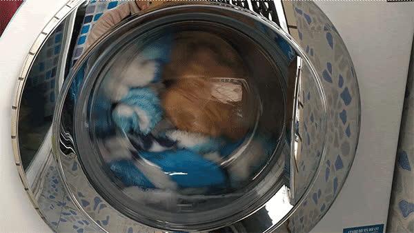 5 hành động dại dột khi sử dụng máy giặt khiến quần áo mãi không sạch, thậm chí còn chứa đầy vi khuẩn gây bệnh - Ảnh 1