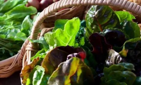 6 thực phẩm và đồ uống ít calo dành cho người muốn giảm cân - Ảnh 6