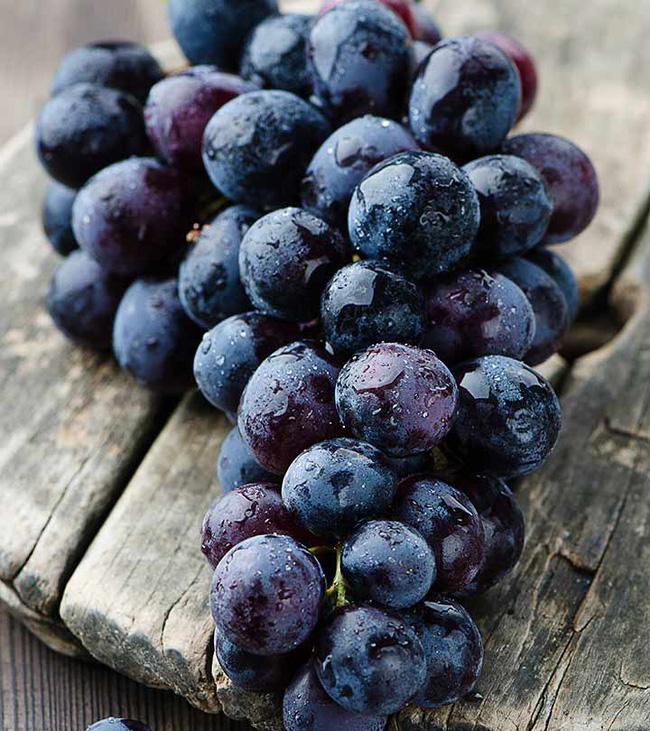 Loại thực phẩm màu đen được chuyên gia ca ngợi là thuốc bổ khỏe thân, lại dưỡng nhan vào mùa đông, phụ nữ càng ăn sẽ càng khỏe và trẻ ra - Ảnh 3
