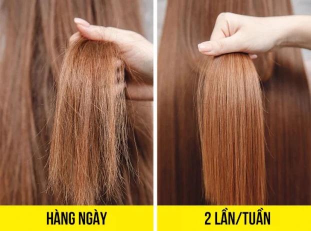 8 sai lầm khi gội đầu bạn có thể đang mắc phải khiến tóc khô xơ, nhanh bết - Ảnh 2