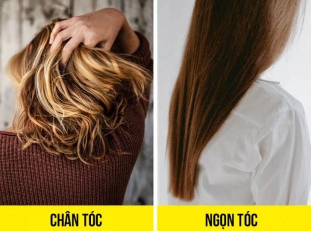 8 sai lầm khi gội đầu bạn có thể đang mắc phải khiến tóc khô xơ, nhanh bết - Ảnh 8