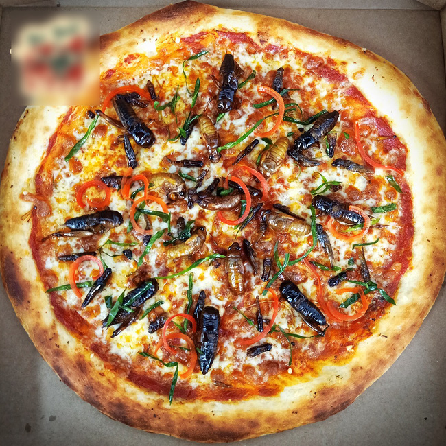 Hà Nội: Xuất hiện loại pizza có topping dế mèn, châu chấu, ve sầu khiến khách hàng yếu tim chạy... mất dép - Ảnh 1