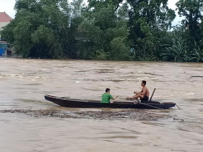 Người dân Hà Tĩnh liều mình vớt củi bất chấp nước sông dâng cao - Ảnh 1