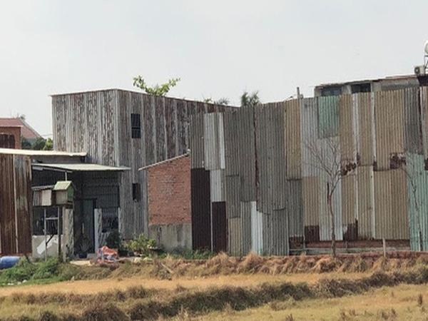 Hàng loạt vi phạm đất đai tại huyện Bình Chánh, chuyển công an điều tra nếu có dấu hiệu lừa đảo, đầu cơ đất