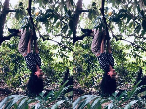 H'Hen Niê tung ảnh đu ngược cành cây, fan bất ngờ réo tên bản hit mới của Bích Phương