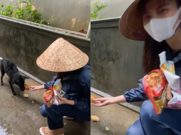 Khoe clip Thủy Tiên lo cho chú chó chịu đói giữa mưa lũ, Công Vinh tiết lộ điều khó ngờ ở bà xã