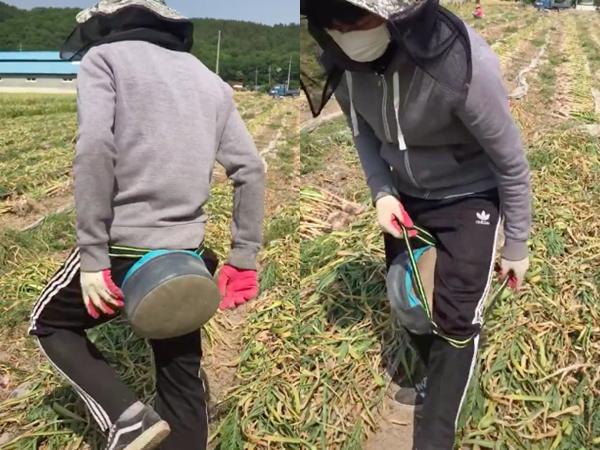 """Thanh niên làm nông tiết lộ cách kiếm 2-3 triệu/ngày ở bên Hàn và thứ """"đạo cụ"""" đắc lực không thể thiếu này khiến dân mạng siêu bất ngờ"""