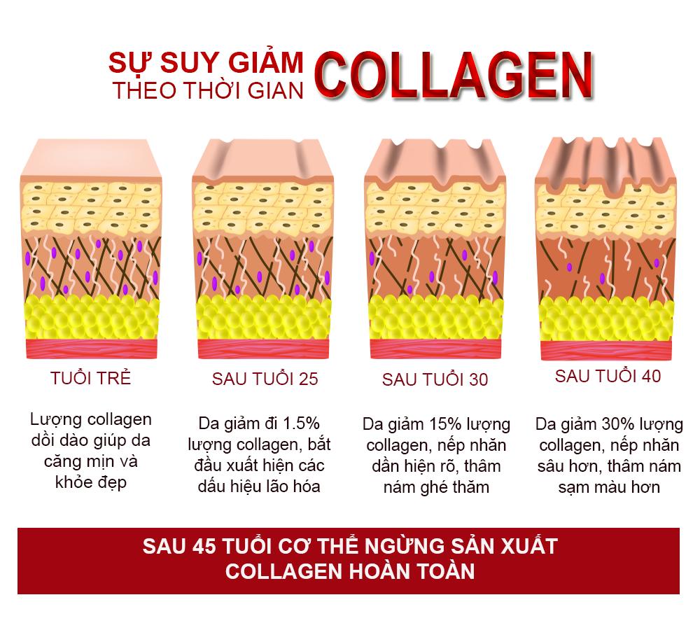 """Những gạch đầu dòng đáng lưu ý cho chị em muốn sử dụng collagen để """"bồi bổ"""" cho da - Ảnh 1"""