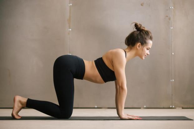 4 bài tập yoga giúp bạn nhắm mắt là ngủ ngay một mạch tới sáng - Ảnh 2