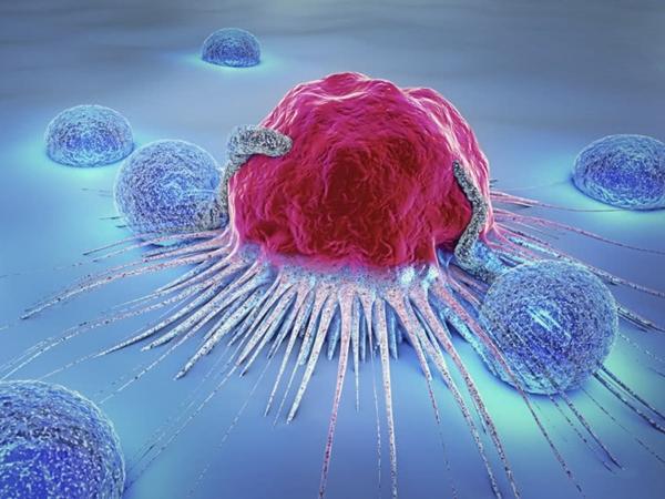 Thuộc nằm lòng 10 ĐIỀU này, cả đời bạn sẽ không bị bệnh ung thư làm phiền