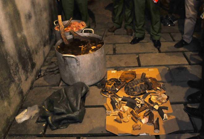 Cảnh sát nổ súng khống chế nhóm nấu cao con hổ nặng 230 kg - Ảnh 1