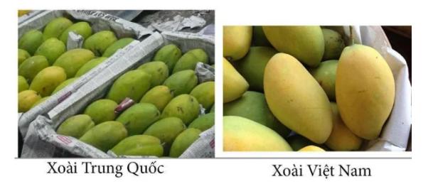 20 cách phân biệt thực phẩm Trung Quốc và Việt Nam, biết để bảo vệ sức khỏe cả gia đình - Ảnh 18