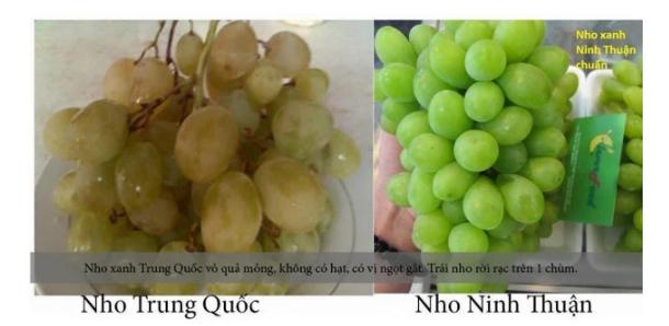 20 cách phân biệt thực phẩm Trung Quốc và Việt Nam, biết để bảo vệ sức khỏe cả gia đình - Ảnh 20