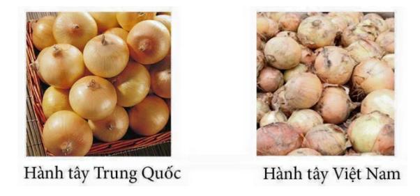 20 cách phân biệt thực phẩm Trung Quốc và Việt Nam, biết để bảo vệ sức khỏe cả gia đình - Ảnh 8