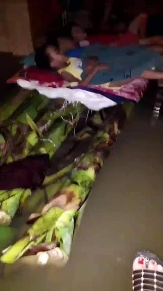 Rớt nước mắt với cảnh tượng những đứa trẻ ngủ ngoan trên chiếc bè chuối, trong ngôi nhà nhỏ bốn bề toàn là nước lũ - Ảnh 1