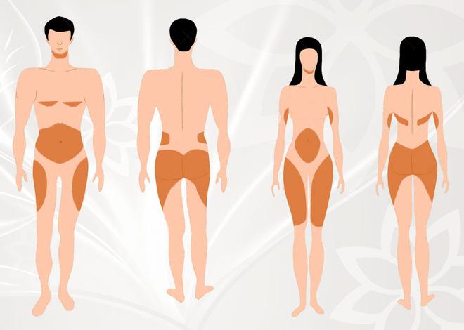 Những vùng cơ thể