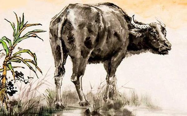 3 con giáp xui xẻo, đen đủi đủ đường khi bị hung tinh theo sát trong tháng 9 âm lịch - Ảnh 1