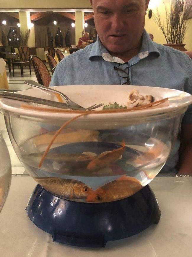 Loạt đồ ăn khi lên mâm của các nhà hàng siêu trí tuệ khiến dân mạng cười ngất vì độ vô lý có 1-0-2 - Ảnh 6