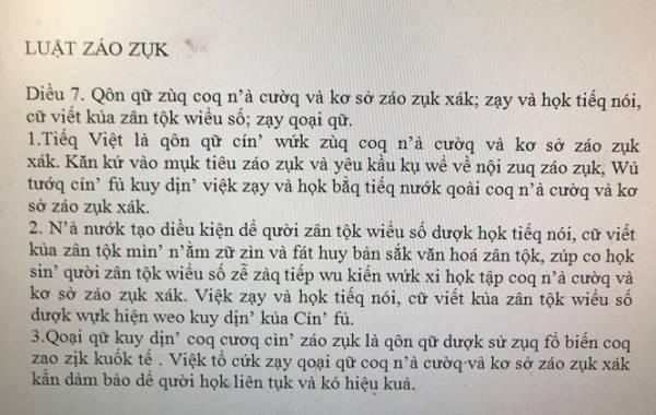 Tác giả đề xuất cải cách tiếng Việt, 'Luật giáo dục' thành 'Luật záo zụk': 'Có người nói tôi rửng mỡ' - Ảnh 3