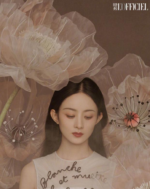 Sau 2 năm kết hôn, Phùng Thiệu Phong 'xuống mã' không phanh, chẳng bù cho Triệu Lệ Dĩnh thay đổi ngoạn mục - Ảnh 9