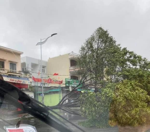 Video: Gió giật liên hồi thổi bay mái nhà bằng tôn ở các tỉnh miền Trung - Ảnh 3