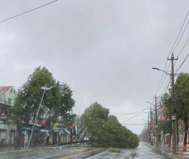 Video: Gió giật liên hồi thổi bay mái nhà bằng tôn ở các tỉnh miền Trung - Ảnh 7