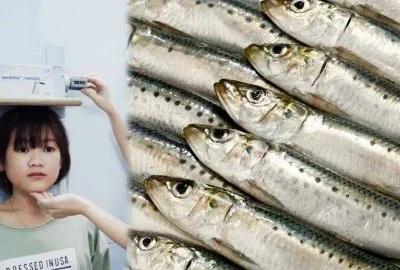 2 loại cá có thể thay thế 3 ly sữa một ngày, nhiều canxi giúp phát triển chiều cao tối đa - Ảnh 2
