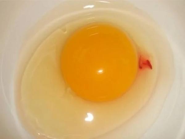 Đập trứng ra bát thấy có vệt đỏ như máu, nên ăn tiếp hay bỏ đi - Ảnh 1