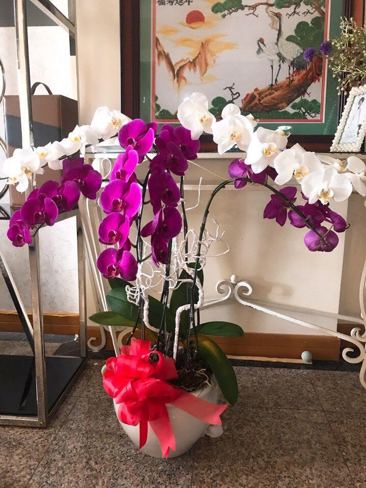Phi Thanh Vân khoe món quà giá trị từ tình cũ đại gia nhân ngày 8.3 - Ảnh 5