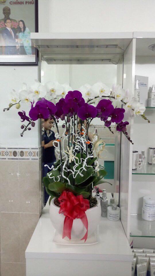 Phi Thanh Vân khoe món quà giá trị từ tình cũ đại gia nhân ngày 8.3 - Ảnh 4